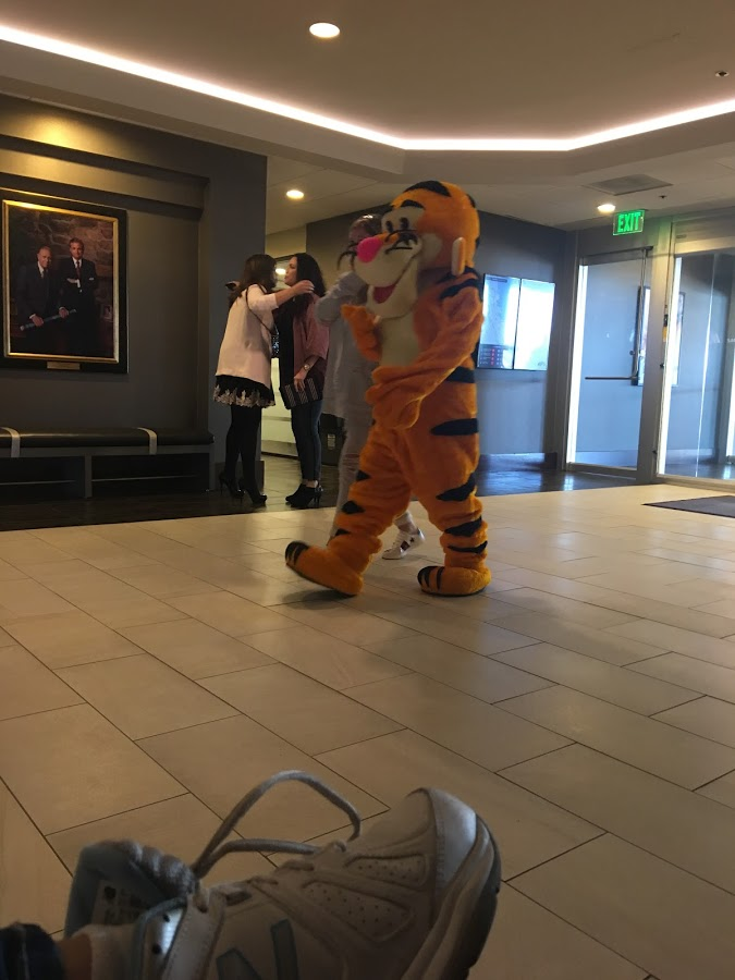 Ran Into Tigger in the BFRB Conference Hotel Lobby.